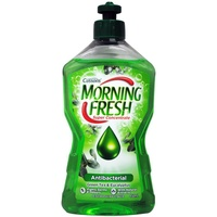 Morning Fresh Dishwashing Liquid Antibacterial Green Tea & Eucalyptus 450mL