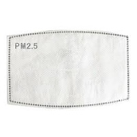 Reusable Mask Filters PM 2.5 Pack of 5